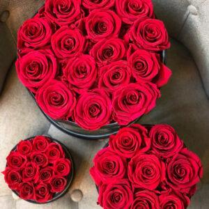 Rose rosse – Cappelliera